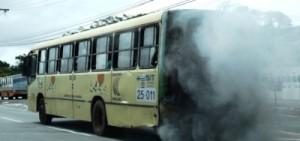 É assim que os ônibus circulam em SL...
