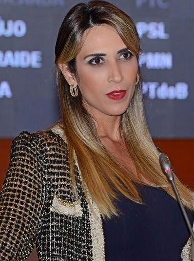 """Andrea mostra preocupação: """"Flávio Dino está cego pelo ódio"""""""