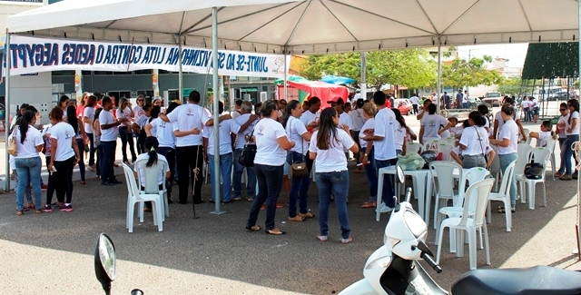 Voluntários organizaram-se na campanha...