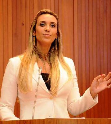 Andrea criticou postura de Flávio Dino