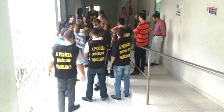 Para os peritos, categoria tem sido tratada com diferenciação pelo governo Flávio Dino