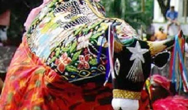 O colorido da festa marca o encerramento dos festejos